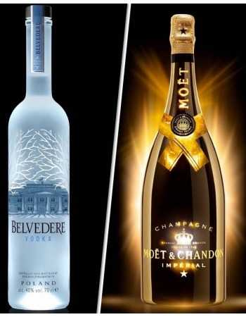 Misterchampagne.ch 6 Cocktail Glasses + Luminous Vodka & Champagne - 2 x Magnum CHF 363,00 Champagne On Ice