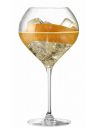 """Champagne 2 Jamesse glasses """"Champagne on ice"""" LEHMANN 75 cl CHF30,00 Accessories"""