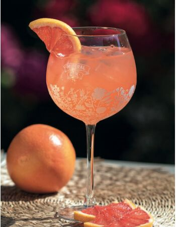 Mistral Gin 1 Glass Limited Edition Dry Gin Rosé CHF10,00 Home