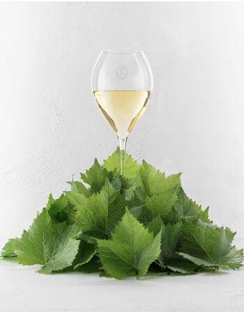 Louis Roederer Set 2013 : 2 verres + Blanc de Blancs, Brut, Rosé - 3 x 75 cl CHF263,00 product_reduction_percent Louis Roederer